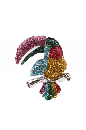 Tropical Toucan Brooch